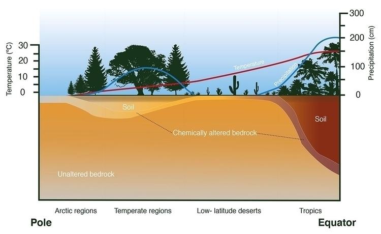 Soil topography - illustration - kiwi-1078 | ello