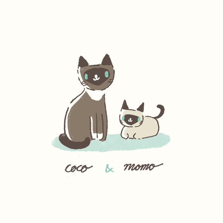Coco Momo siamese kitten - illustration - petitpetite | ello