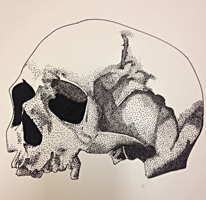 Skull head - illustration, dotwork - rachelmig | ello
