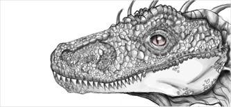 Velociraptor - illustration, drawing - jessicaredmond | ello