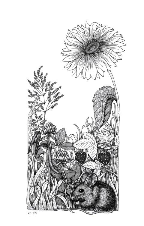 mouse, illustration, drawing - ellenparzer | ello