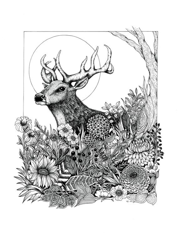 woods - deer, illustration, nature - ellenparzer | ello
