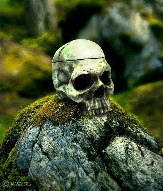 Skull - skull, sculpture, photography - mascaron | ello