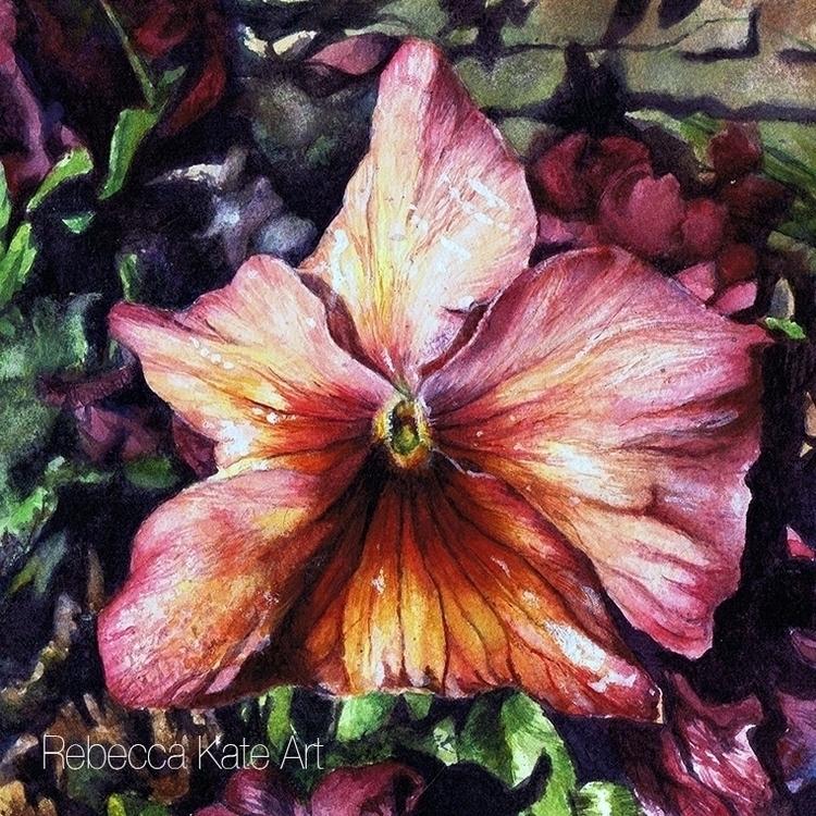 Pansy - Flower, Painting, Garden - rebeccakateart | ello