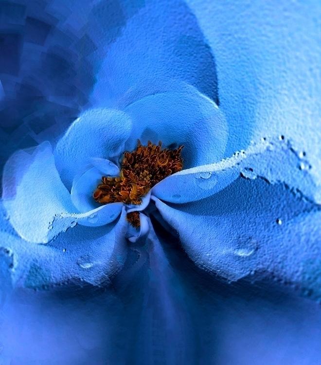 BLUE - digital, abstract, flowers - carmenvelcic | ello
