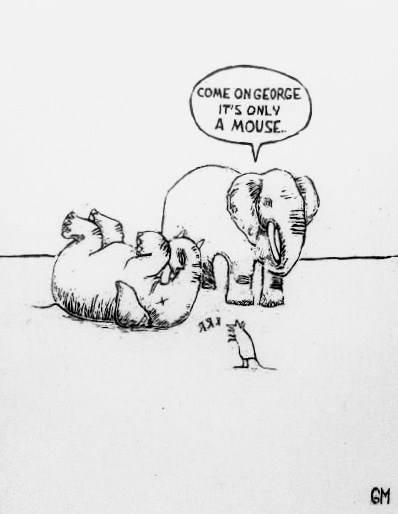 Elephants mouse Garance Monfort - garancemonfort | ello