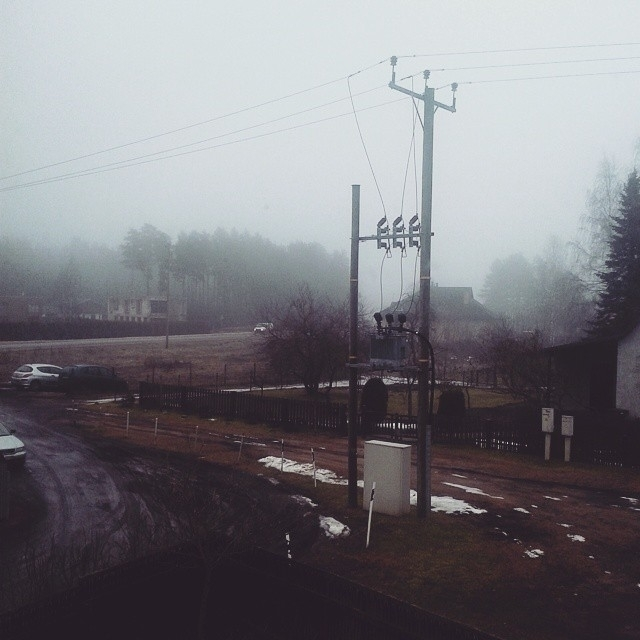 morning, fog, nature, photography - saffiri | ello