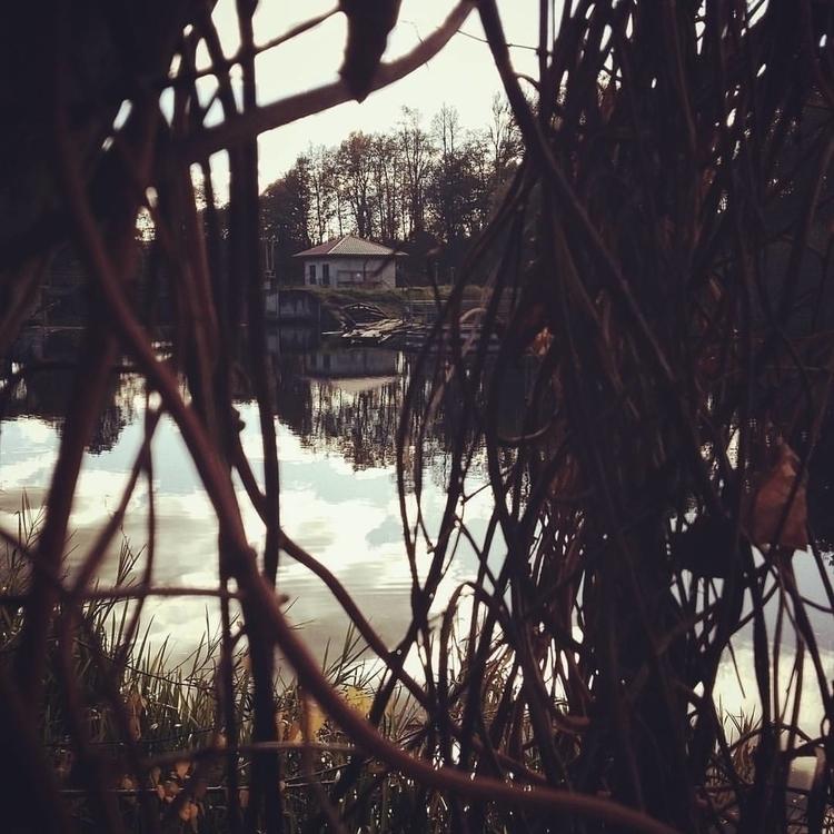 home, hause, lake, nature, lost - saffiri | ello