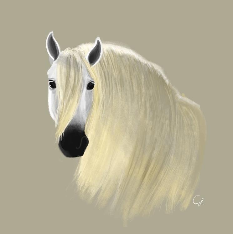 Horse - illustration, horse, digitalart - unicorndoodles | ello