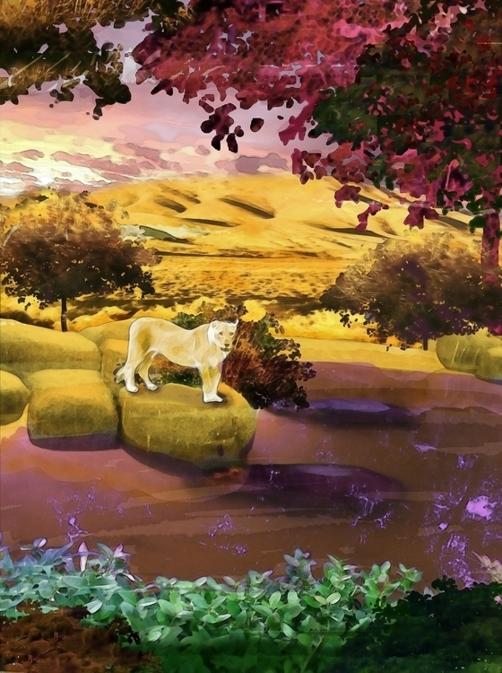 lioness Isin - chimerikel | ello