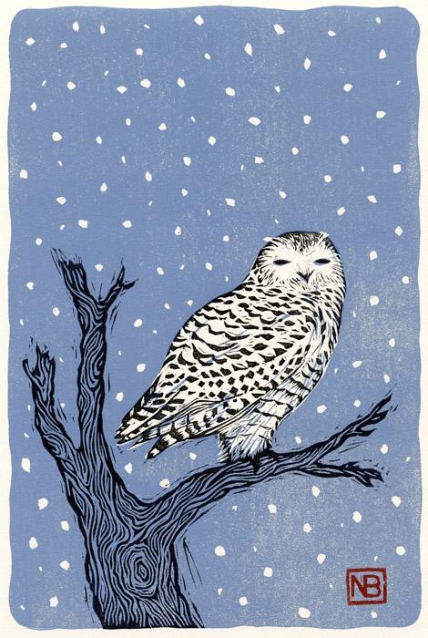 Wisdom - illustration, bird, owl - neilbrigham | ello
