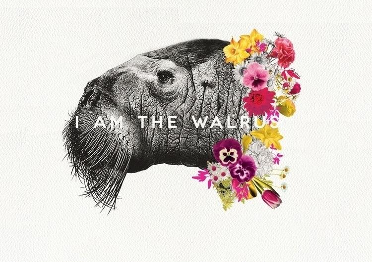 walrus - beatles, flowers, collage - laradenys | ello