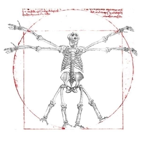 Homo neanderthalensis - design - tomasch516 | ello