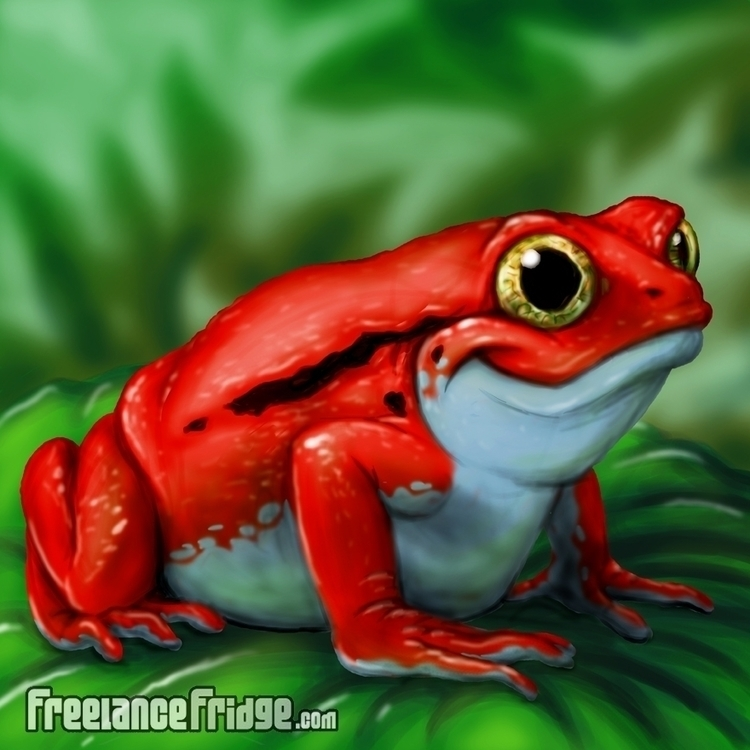 Cartoon Red Tomato Frog - characterdesign - freelancefridge | ello
