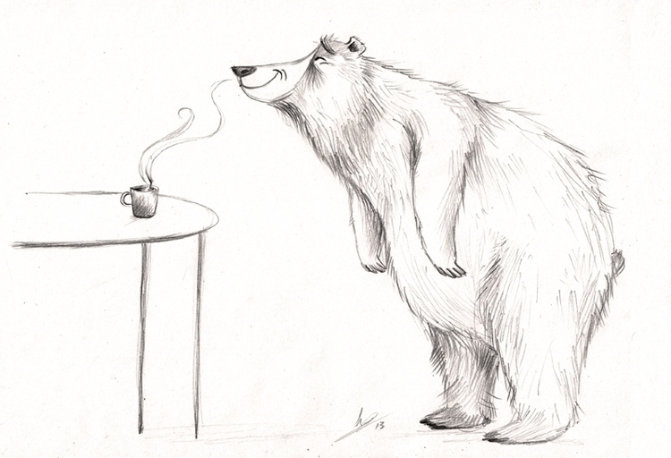 Character sketch Bear - illustration - kellybreemer | ello