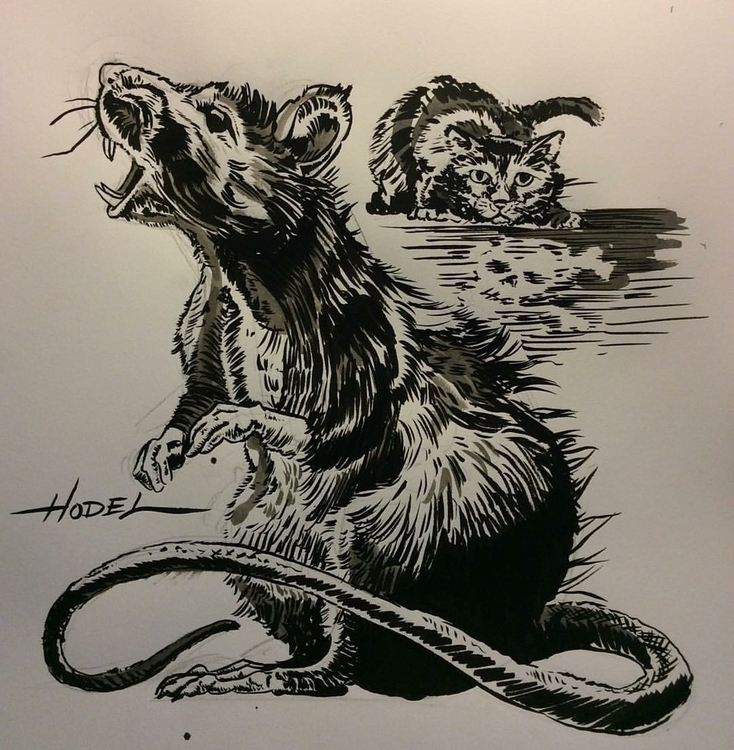 Rats Death - illustration, drawing - matthewhodel | ello