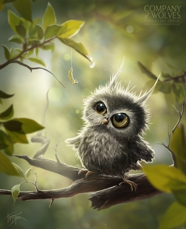 trees - owl, owls, cute, nature - companyofwolves | ello