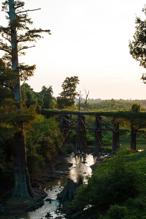 Bridge - photography, matthodel - matthewhodel   ello