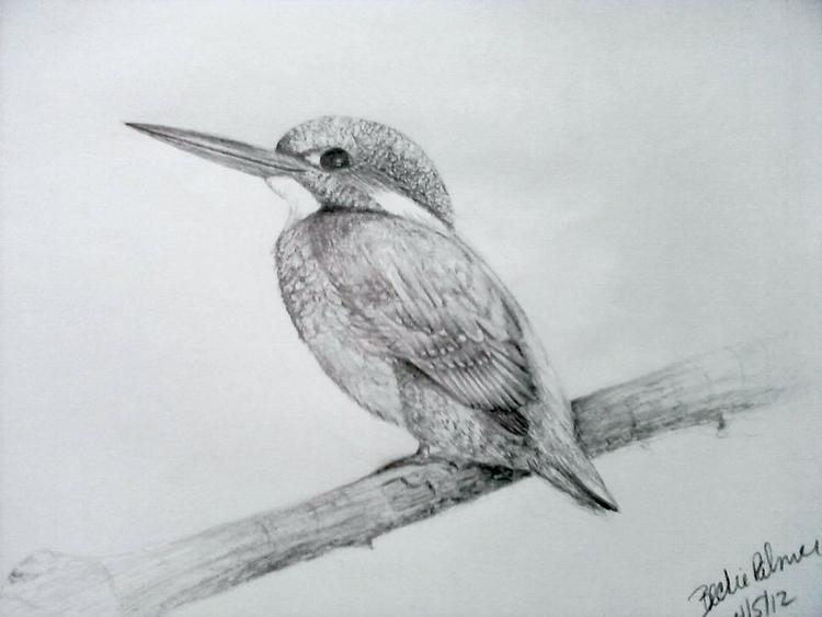 Bird limb drawing - pencildrawing - beckiepalmer | ello