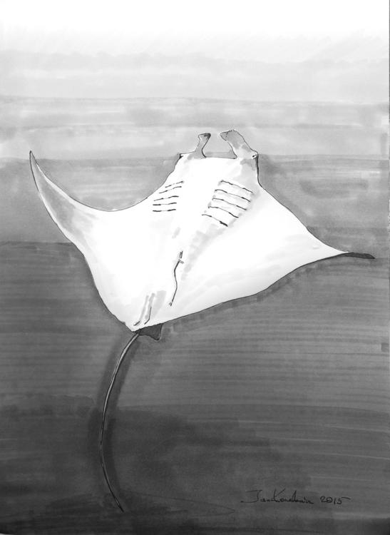A3, Artpen + markers - mantis, shark - jandraws | ello