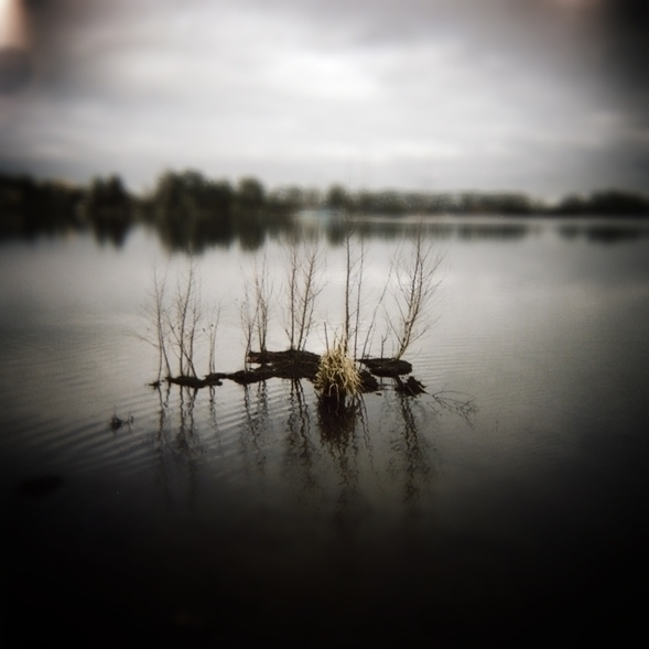Hamilton Lake - holga, toycamera - marham1160   ello