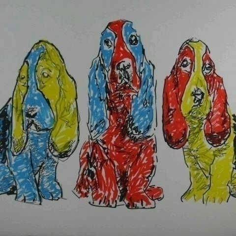 Basset hounds - dog, dogs, bassethound - kleckerlabor-5193 | ello