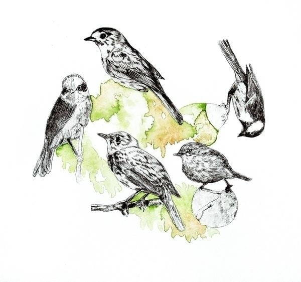bird, blackandwhite, drawing - randi-8271 | ello