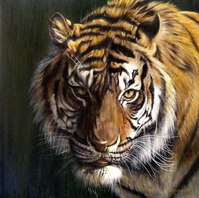 Tiger - ziyae | ello