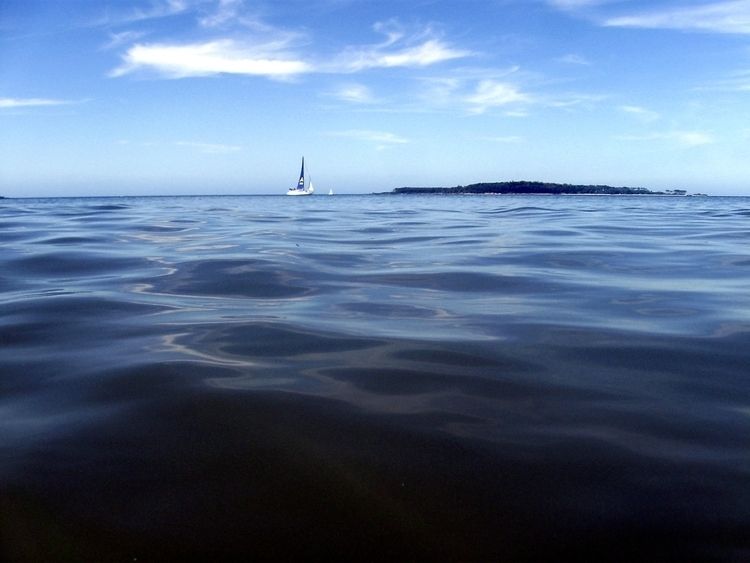 Sailboat - sail, sailboat, boat - alvimann | ello