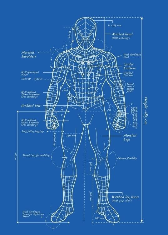 Spiderman Blueprint - VectorIllustration - vantage-9372 | ello
