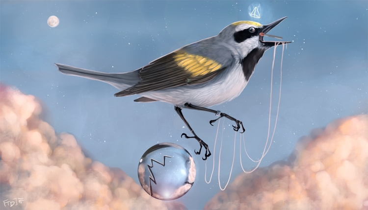 Caught Unknown - surreal, warbler - mozakade | ello
