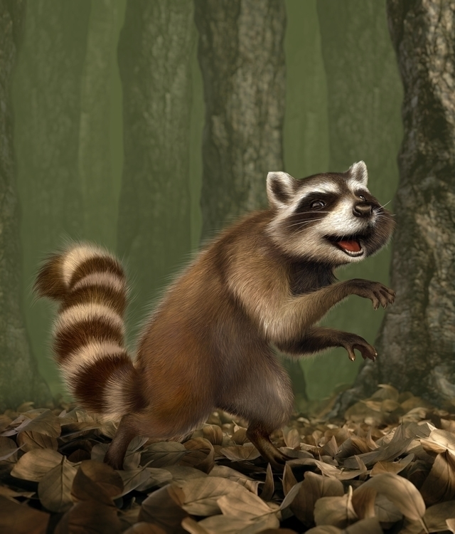 Raccoon - raccoon, 3d, forest, cheeky - charactermill | ello