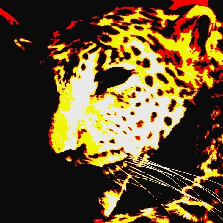 Leopard, Martin Mcguire - illustration - martinmcguire | ello
