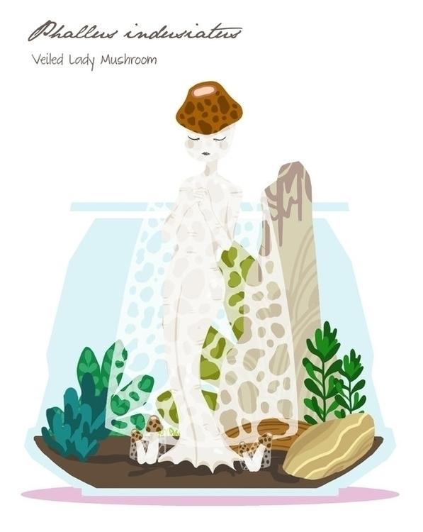 Veiled Lady Mushroom (Phallus i - rei410 | ello