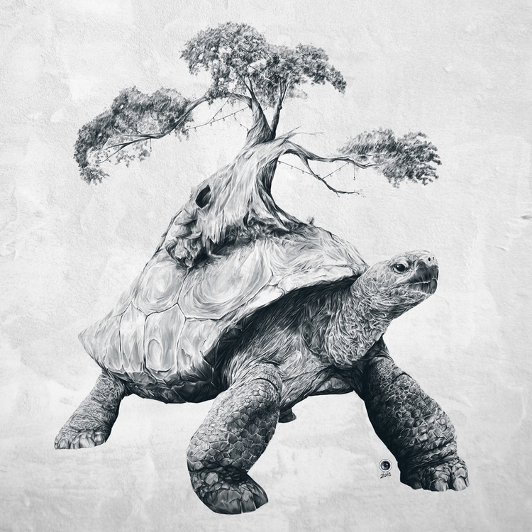 Tortoise Tree - Growth Digital  - adamdunt | ello