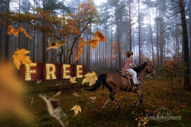 Free - horse, leaves, running - kimwhit-2847 | ello