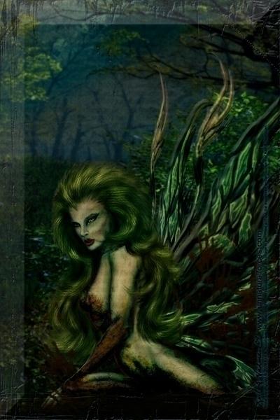 Maya - earth, fairy, seductive, elemental - thelycanknight   ello