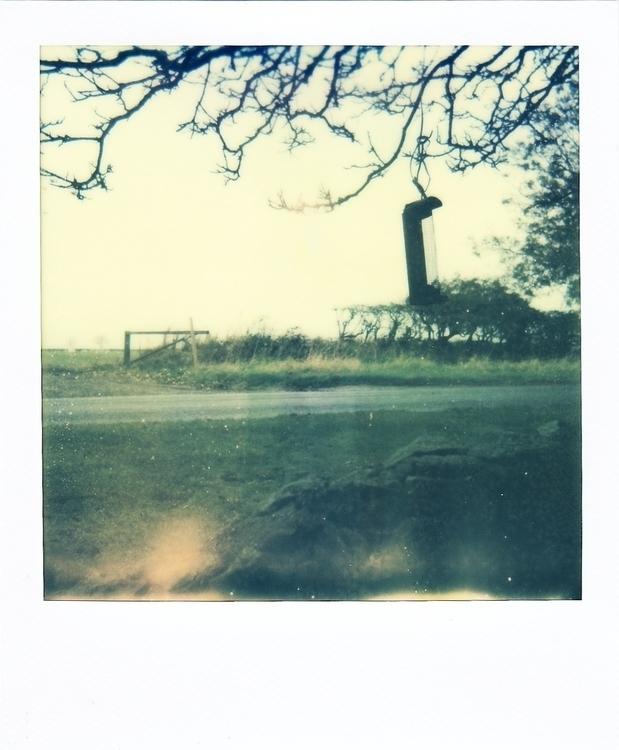 photography, polaroid, memories - juliahs-1141 | ello