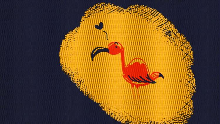 guara, bird - amandaloyolla | ello