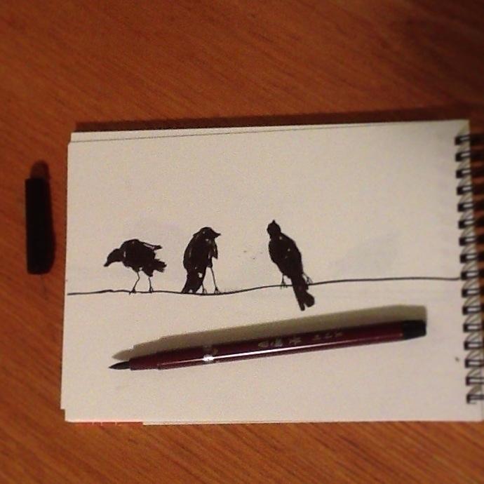 Birds - blackandwhite, Sketch, Pen - ilanagraf | ello