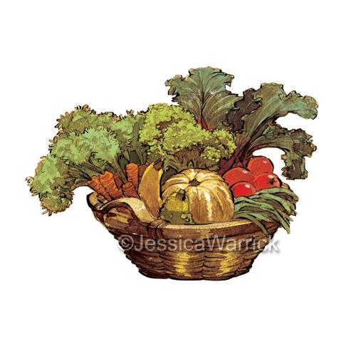 Veggies - veggies, vegetables, harvest - jessicawarrick   ello