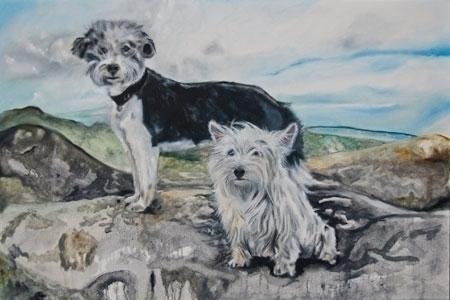Roxie Skye - dogs, longhairedterrior - lavott | ello
