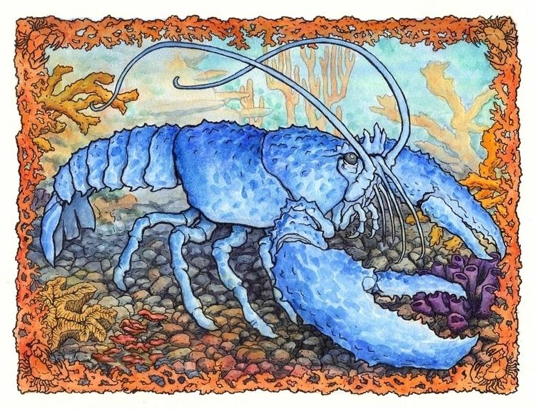 Lobster King - illustration, painting - bluemask-5749 | ello
