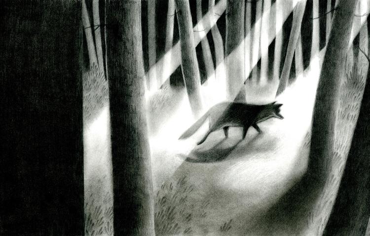 illustration, characterdesign - elenaillustration | ello