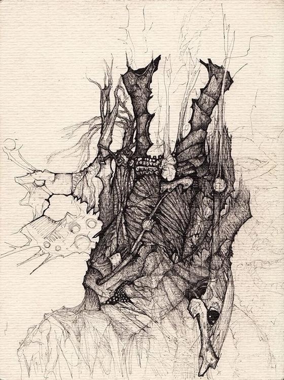 illustration - wolfgangcamara | ello