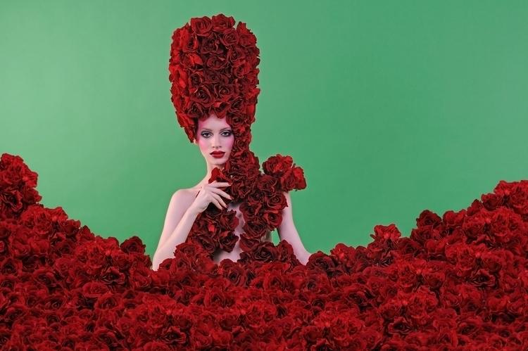 wild roses grow - photography - sazelijalal | ello