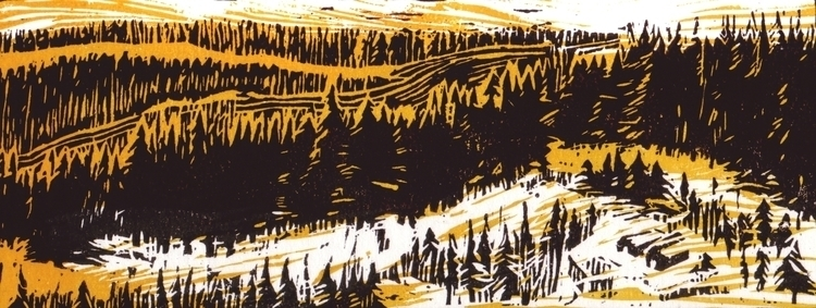 Northern Forest northern forest - leo_partus   ello