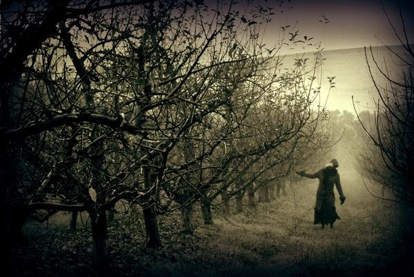 James McKenzie - photography, dark - jamesmckenzie | ello
