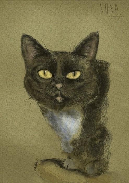 sweetest Stela <3 - cat, mixedmedia - kunarysuje | ello