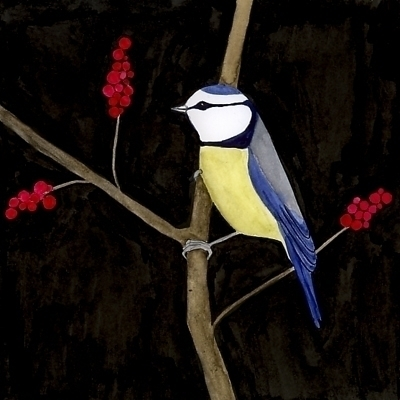 titmouse, watercolour, bird, bluetit - robincottage | ello